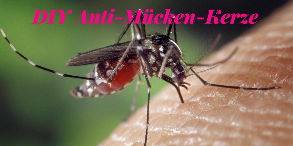 Urlaub zuhause - Tipps für Daheimgebliebene DIY Anti-Mücken-Kerze